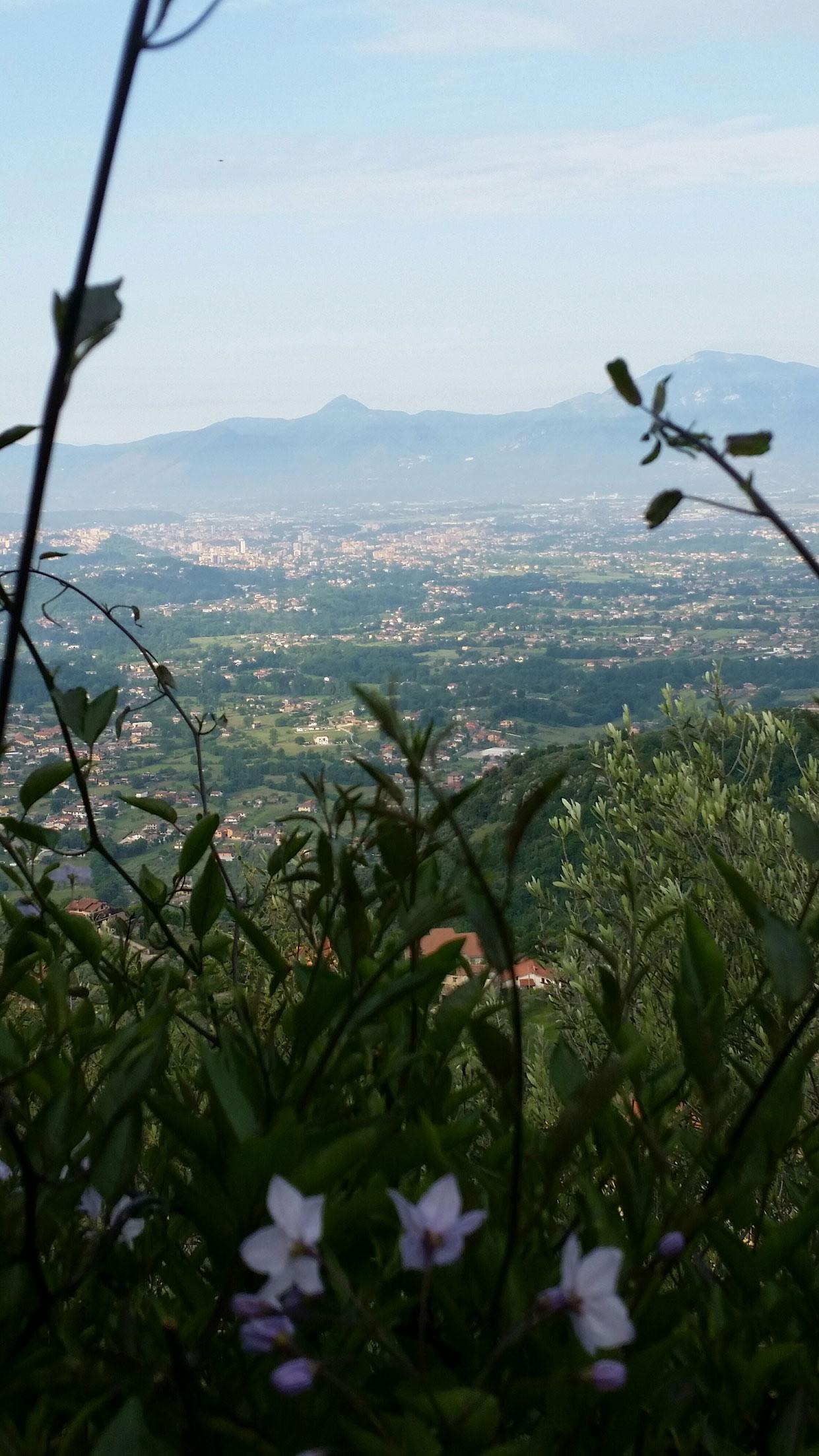 Utsikt fra hagen